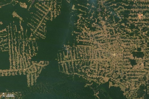 Deforestation in the state of Rondônia in western Brazil. Photo: NASA