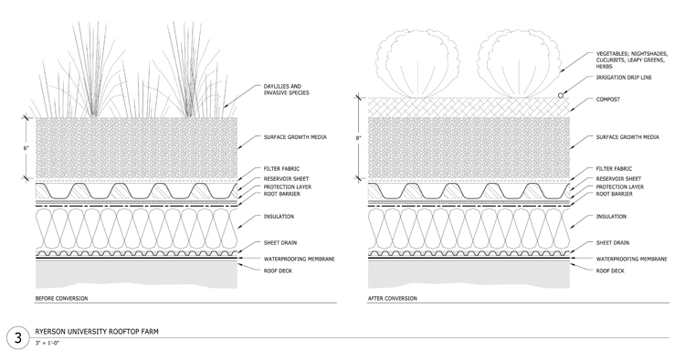 ROOF TO TABLE Landscape Architecture Magazine