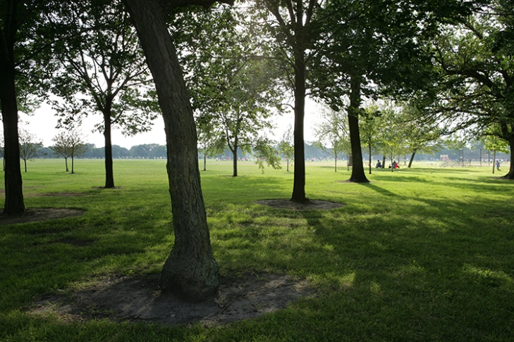 Washington Park, one of two sites being offered by the University of Chicago for the Barack Obama Presidential Library and Museum. Credit: