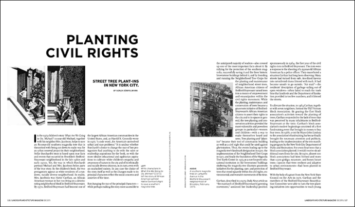 Street tree plant-ins in New York City.