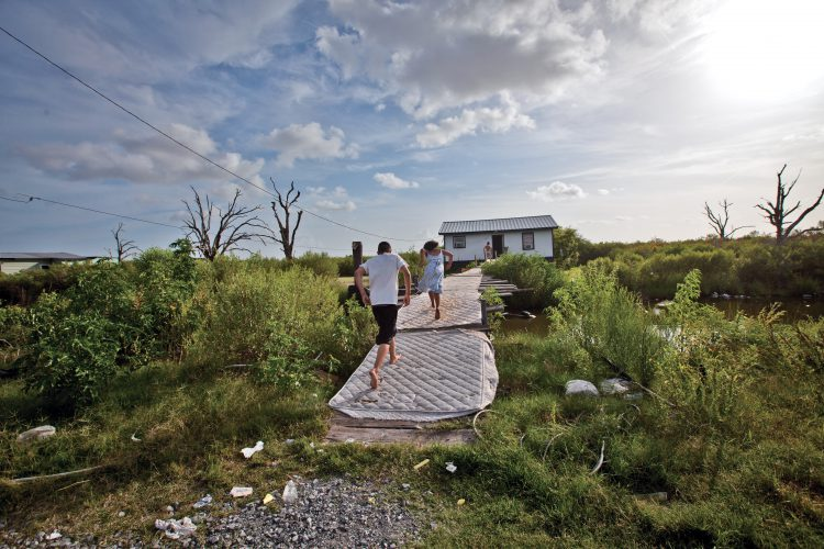 october lam new orleans landscape architecture magazine